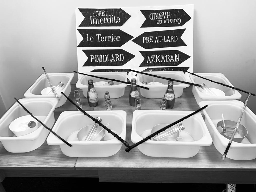 experience noir et blanc - Harry Potter